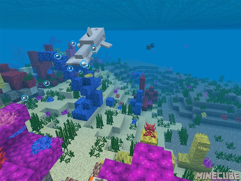 Coral Reef and Underwater Caves Seed
