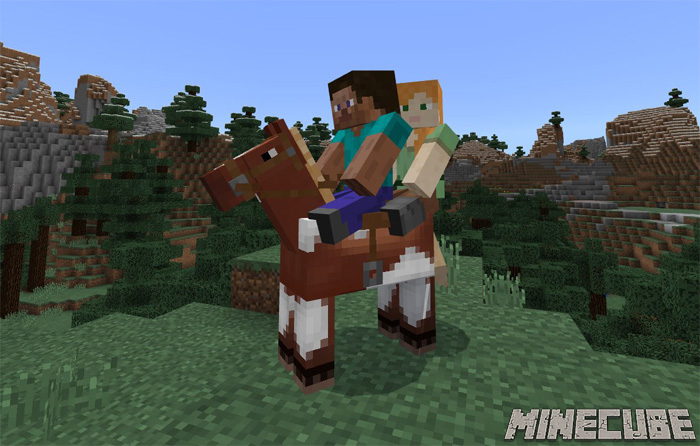2 Player Horse Riding Addon