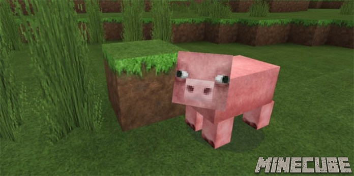 R3D.CRAFT Smooth Realism PE Texture Pack